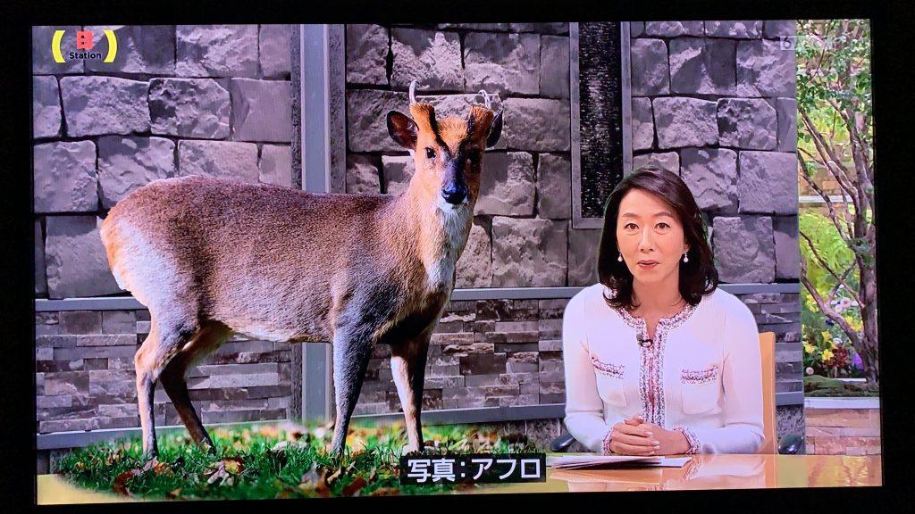 【メディア掲載:TV朝日サンデーステーション】12月22日